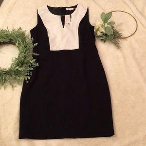 Calvin Klein Sleeveless Dress NWT